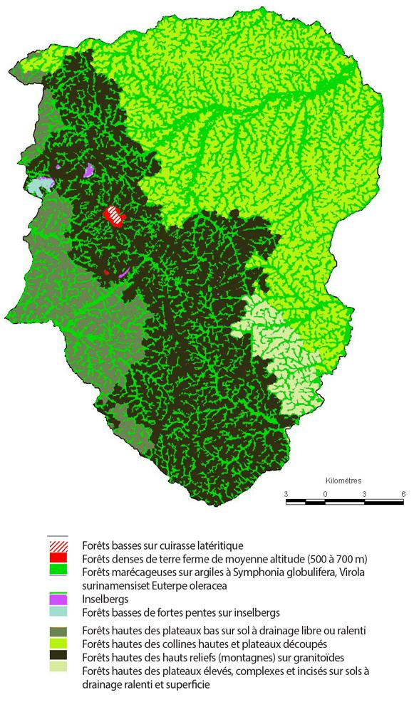 Carte des habitats de la réserve basée sur la typologie provisoire du programme Habitats. Source : O. Brunaux, ONF